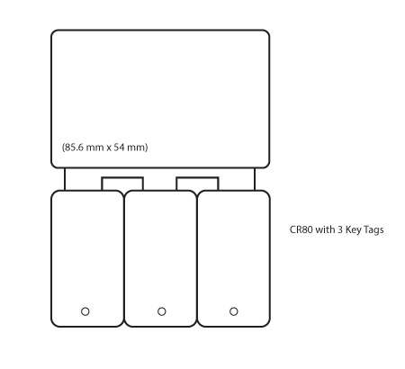 cr80 plastic card with 3 key tags
